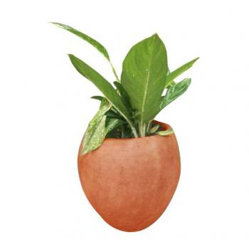 Small Round Cement pot -...